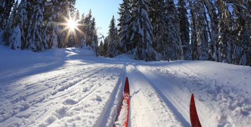 Лыжни и тропы здоровья